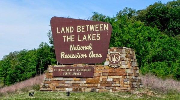 The Lake News