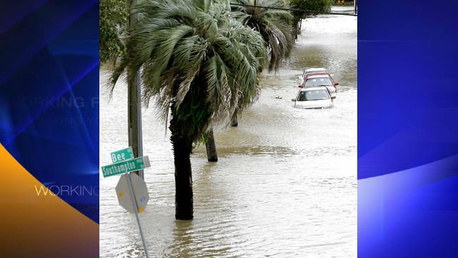 (AP Photo/John Raoux). Cars with water up over the doors are parked in a downtown neighborhood after Hurricane Irma brought floodwaters to in Jacksonville, Fla. Monday, Sept. 11, 2017,