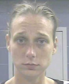 Amanda Young was arrested and charged with receiving or transferring stolen property.