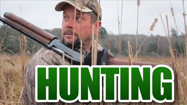 Wv dnr make changes to state 39 s hunting regulations wvu for Wv hunting and fishing license